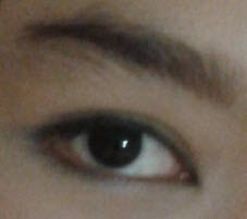 wardah eyebrow brown
