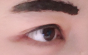 Review etude house tint my brows gel gray brown